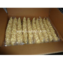 fresh peeled garlic for export