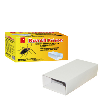 Carbon Board Roach Glue Prison