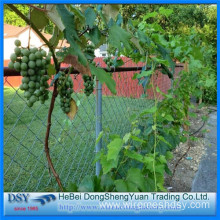 High Quality Galvanized Chain Link Mesh