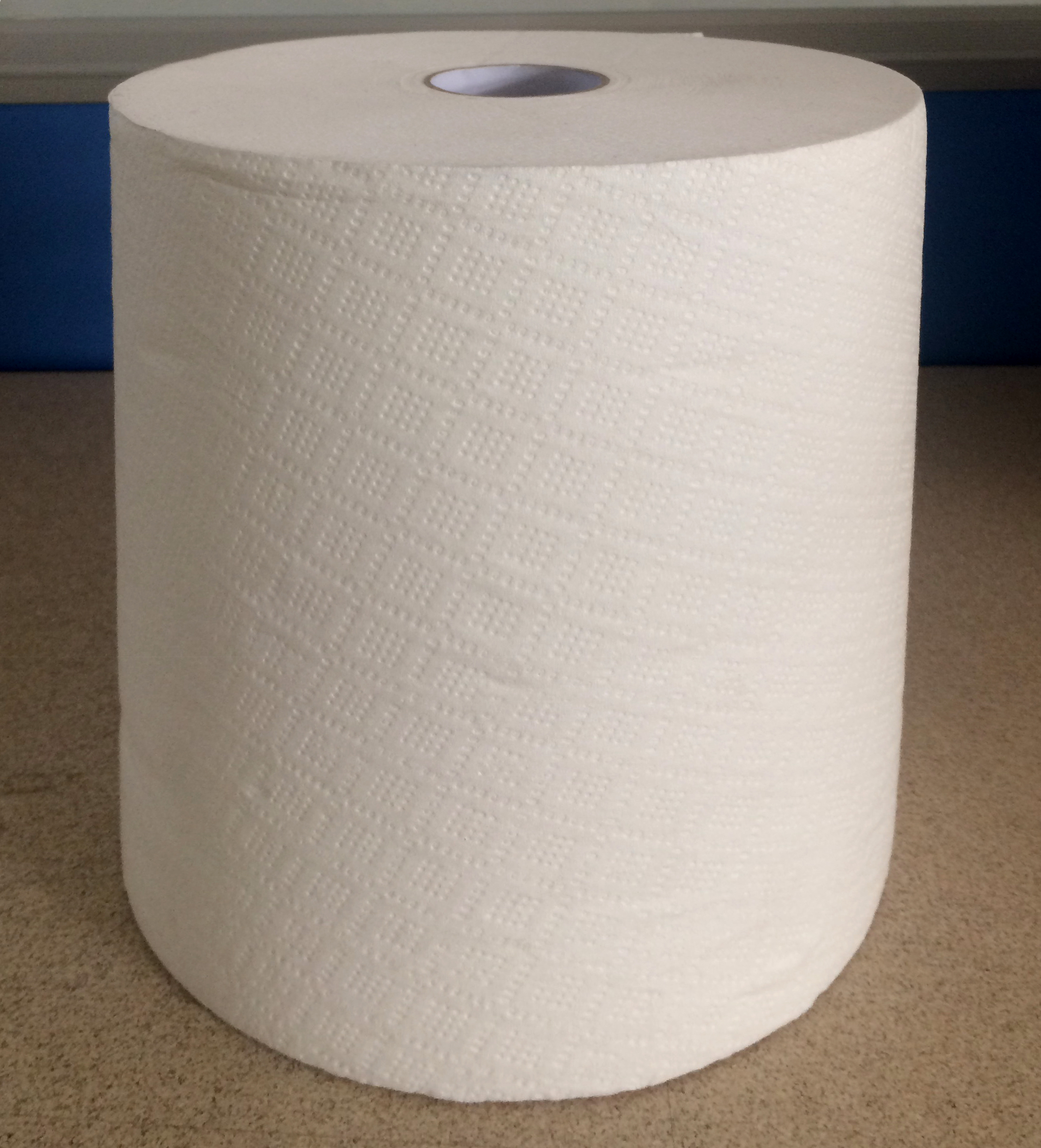 Paper Towel Roll