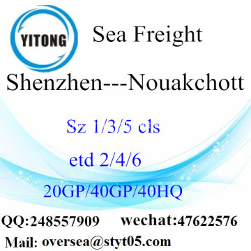 Shenzhen Port Sea Freight Shipping To Nouakchott