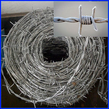 Hot Gavanized barbed wire price per roll kenya