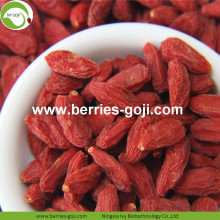 Wholesale Bulk Premium Low Pesticide Goji Berries