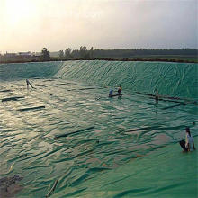 Black and Green Double-color Geomembrane HDPE Geomembrane