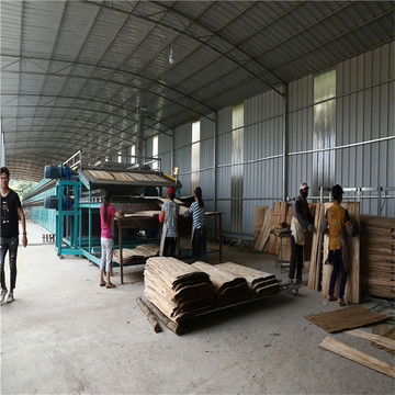 Core Veneer Roller Dryer Machinery
