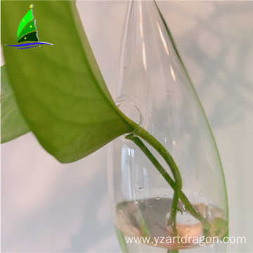 suspension type plant hanging glass vase terrarium