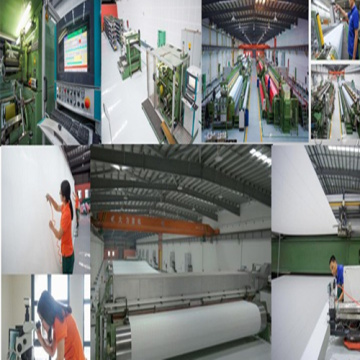 Synthetic Forming Wire cloth
