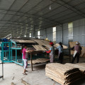 Good Quality Of Plywood Veneer Dryer