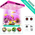 Phlizon 600W COB LED Grow light