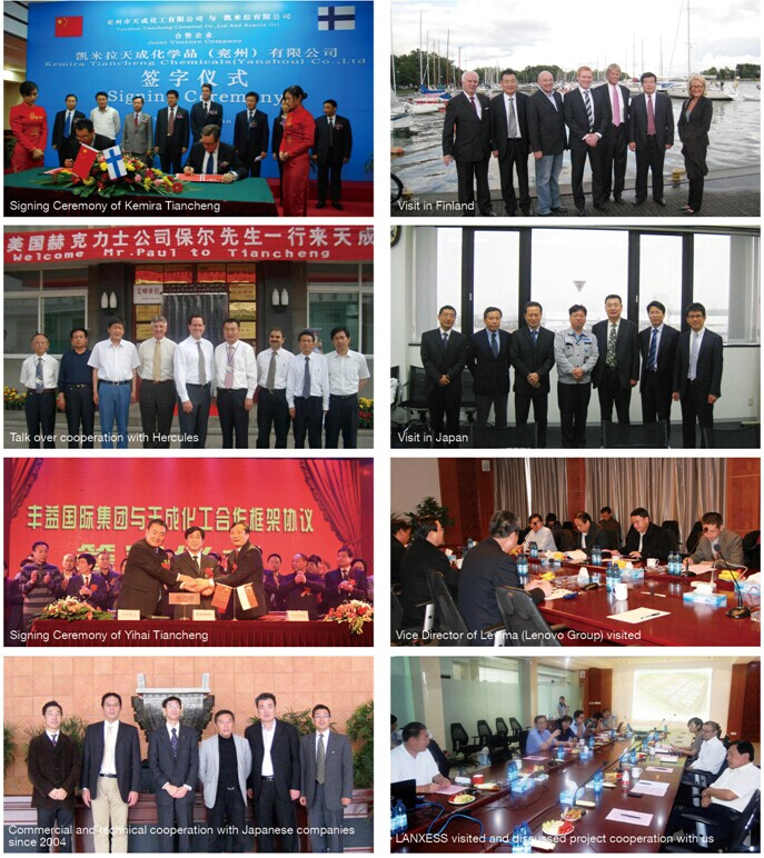 shandong tiancheng chemical co., ltd.business partners