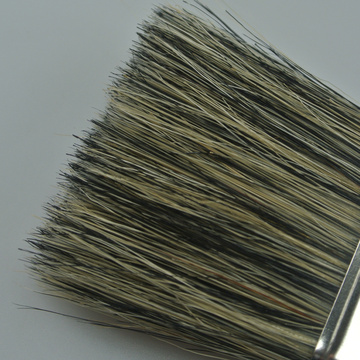Standard Quality Bristle Paint Brush
