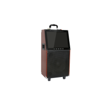 High power wooden rechargeable Led Display Trolley Speaker