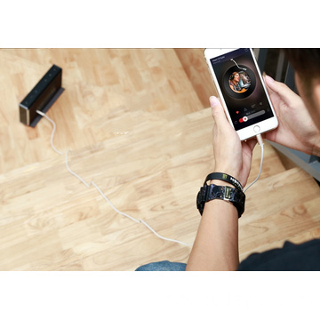Audio Adapter for iPhone