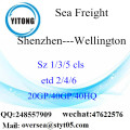 Shenzhen Port Sea Freight Shipping To Wellington