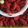Buy Natural Nutrition Dried Fruit Lycium Berry