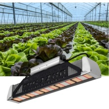 Waterlife Phlizon LED Grow Φως 240W US Stock