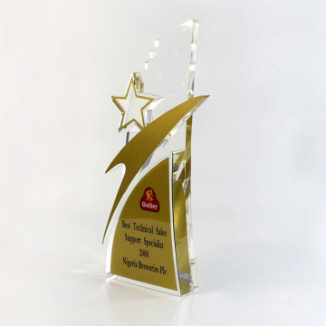 cheap custom online star business trophies