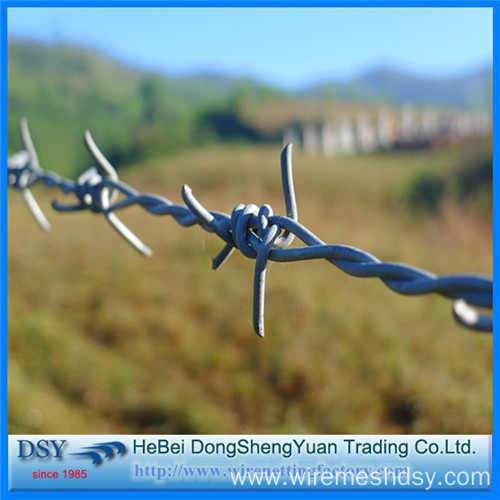 Modern Security Fencing Barbed Wire