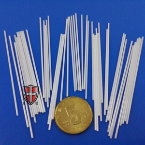 Fast delivery for for Zirconia Ceramic Pin customized zirconia ceramic needle pin export to India Manufacturer