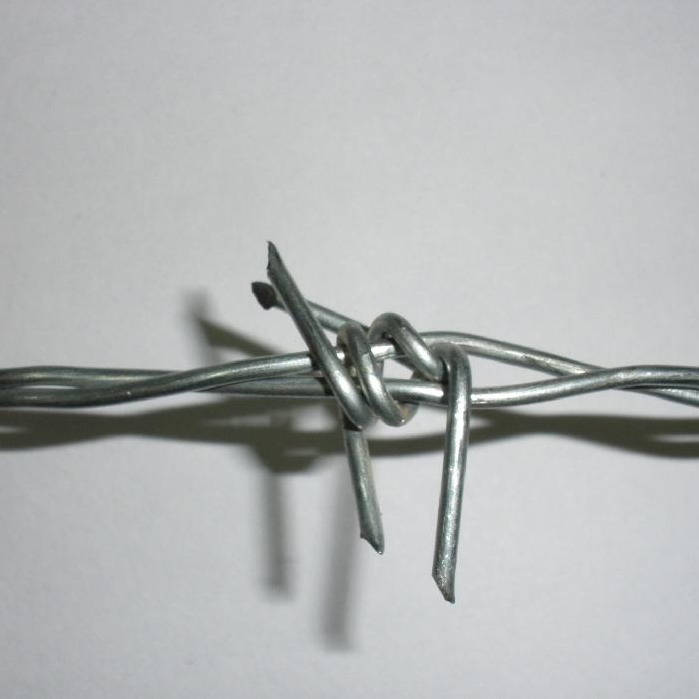 barbed wire (29)