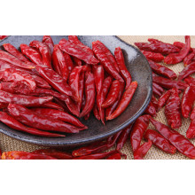 Chinese Dried Chili Best
