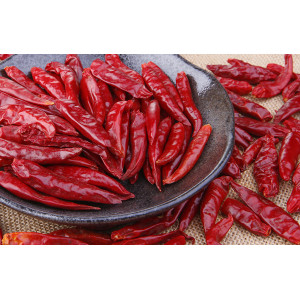 Top quality chili pepper with best price