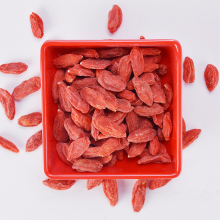 High Quality for Cooking Soup Goji Berry Natural Larger and Juicier Dried Goji Berries supply to United States Minor Outlying Islands Supplier