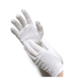 White Cotton Thin Gloves