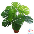 Wholesale eco-friendly artificial small potted green plants