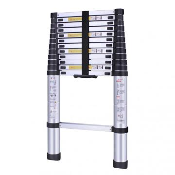 Extension ladder nearby solid durable Amazon offer