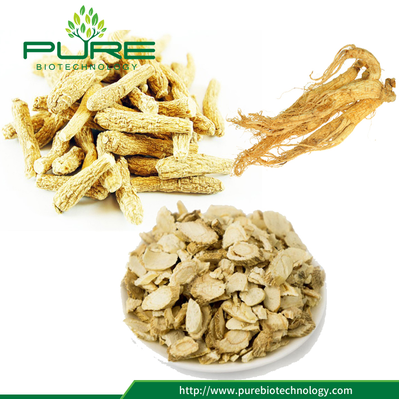 panax ginseng root nature crude herbs