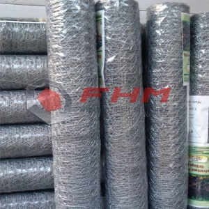 GAW Hot Dipped Galvanized Chicken Wire for Protection