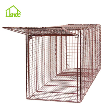 Quality Inspection for for Large Cage Trap,Large Animal Cage,Boar Trap Cage,Wild Hog Live Traps Supplier in China Live Coyote Cage Trap export to Bahamas Importers