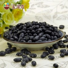 Chinese Professional for Black Soy Beans For Sprouts Small Black Kidney Bean/Black Bean/Black Turtle Beans supply to Australia Wholesale