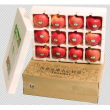Transport-rich red Fuji apple.