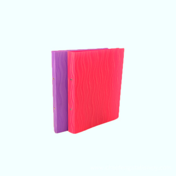 A4 size 2 ring file