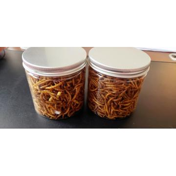 cheap fish food mealworm