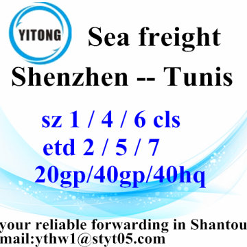Shenzhen Global Ocean Freight Shipping Service to Tunis