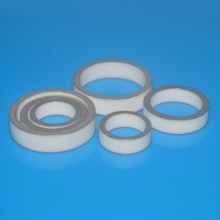 Nickle Plated Metaillized Alumina Ceramic O Ring