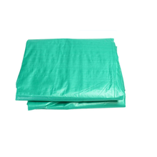 Multipurpose Waterproof UV Coated Reinforced PE Tarpaulin