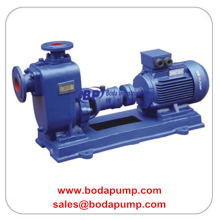 Special for Petrochemical Process Pump Centrifugal Chemical Self-priming Pump supply to British Indian Ocean Territory Factories