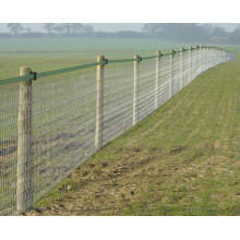 Galvanized livestock fencing cattle farm fence roll