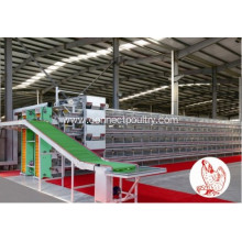 Best Quality for Automated Poultry Farm Equipments, Layer Cage System, Broiler House, Poultry Farm Machinery Manufacturer in China Layer cage of chicken house supply to Comoros Manufacturer