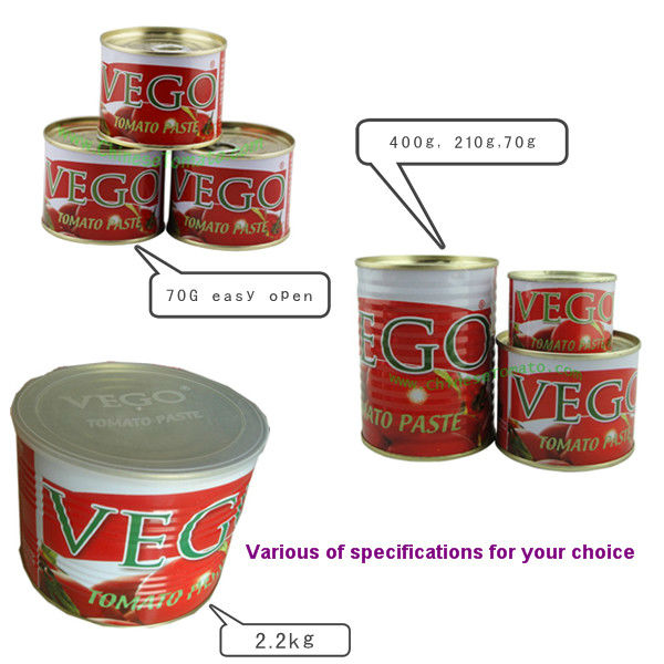 Canned Tomato Paste Certificated by HALAL