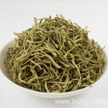 honeysuckle extract goog tea