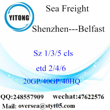 Shenzhen Port Sea Freight Shipping To Belfast