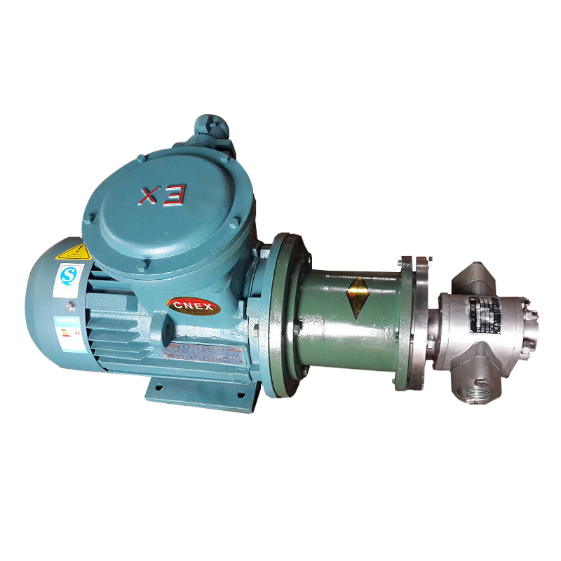 Stainless Steel Electric Magnetic Drive Naphtha Gear Pump