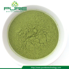 Wholesale GMO-Free Moringa Leaf Powder