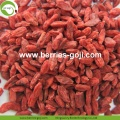 Factory Supply Nutrition Dried Red Wolfberries
