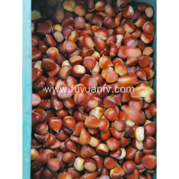 2019 new crop chestnut with good price
